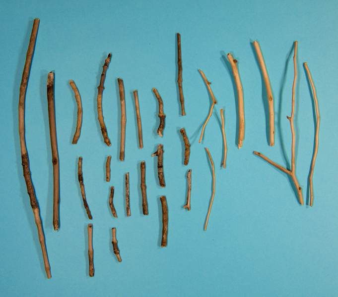 http://www.lexthompson.com/files/gimgs/20_08-debarked-sticks-substitutionary-atonement-for-the-neighbors-dogs.jpg